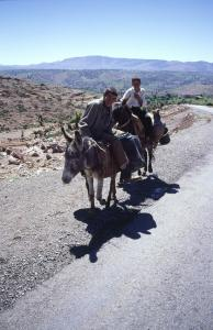 Marokk1999-16